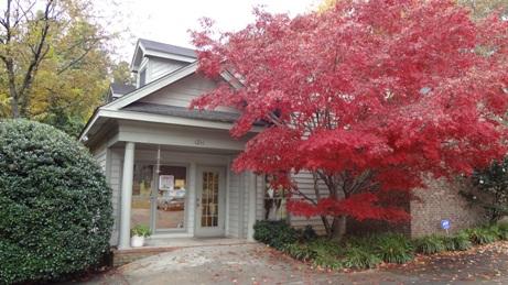 Clinic in fall